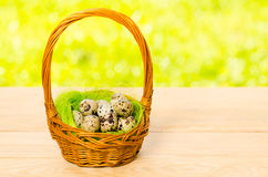 Quail eggs in the wicker basket for Easter Royalty Free Stock Image