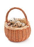 Quail eggs in a wicker basket Royalty Free Stock Images