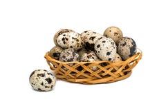 Quail eggs in wicker basket on white background stock photo