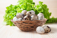 Quail eggs in a wicker bowl on a background of lettuce Stock Photo