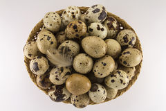 Quail eggs in a wicker oval shape Stock Photography