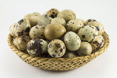 Quail eggs in a wicker oval shape Stock Images