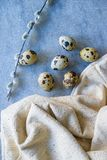 Quail eggs and willow branch with beige cloth royalty free stock photos