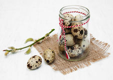Quail eggs with willow branch. On a old white wooden background Royalty Free Stock Photos