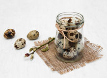 Quail eggs with willow branch. On a old white wooden background Stock Photography