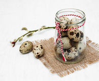Quail eggs with willow branch. On a old white wooden background Royalty Free Stock Photo