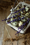 Quail eggs in wire basket, on straw, with lavender twigs on barn wood, Easter, rustic style, countryside interior Royalty Free Stock Photo