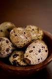 Quail Eggs in a wood bowl Royalty Free Stock Images