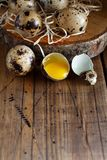 Quail eggs close up. Quail eggs on a wooden background close up Royalty Free Stock Photo