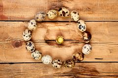 Quail eggs on wooden background. Happy easter royalty free stock photo