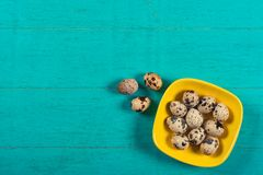 Quail eggs on wooden background stock photos