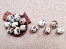 Quail eggs in wooden bird shaped saucer Royalty Free Stock Photography