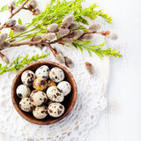 Quail eggs in a wooden bowl Easter white background Willow Top view Copy space Royalty Free Stock Photography