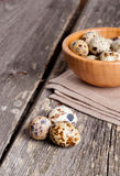 Quail eggs in a wooden bowl on a gray background stock image