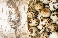 Quail eggs in wooden bowl isolated on wooden background. Healthy food. Quail eggs in a nest on a rustic wooden background. Healthy food concept Royalty Free Stock Images