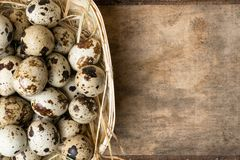 Quail eggs in wooden bowl isolated on wooden background. Healthy food. Quail eggs in a nest on a rustic wooden background. Healthy food concept Royalty Free Stock Photo