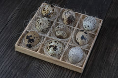 Quail eggs  in wooden box on dark background. Eco products Stock Photos