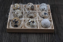 Quail eggs  in wooden box on dark background. Eco products Royalty Free Stock Image