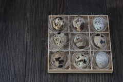 Quail eggs  in wooden box on dark background. Eco products Stock Image
