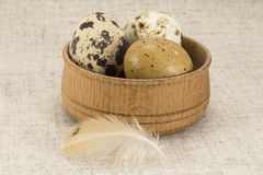 Quail eggs in a wooden circular shape Royalty Free Stock Images
