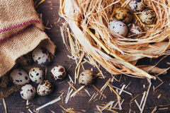 Quail eggs on wooden table. Quail eggs on a brown wooden table Royalty Free Stock Photos