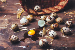 Quail eggs on wooden table. Quail eggs on a brown wooden table Royalty Free Stock Image
