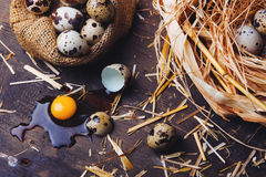 Quail eggs on wooden table. Quail eggs on a brown wooden table Stock Images