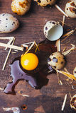 Quail eggs on wooden table. Quail eggs on a brown wooden table Stock Photo