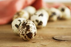 Quail eggs on a wooden table. Close up fresh quail eggs, rustic style and napkin. Copy space. royalty free stock photos