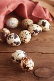 Quail eggs on a wooden table. Close up fresh quail eggs, rustic style and napkin. Copy space. Quail eggs on a wooden table. Close up fresh quail eggs, rustic stock photos
