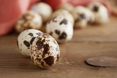 Quail eggs on a wooden table. Close up fresh quail eggs, rustic style and napkin. Copy space. Quail eggs on a wooden table. Close up fresh quail eggs, rustic royalty free stock image