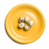 Quail eggs on yellow plate Royalty Free Stock Images