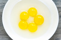 Quail eggs yellow yolk in white porcelain bowl. Closeup. Royalty Free Stock Images