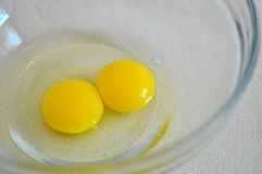 Quail eggs yolk Stock Image