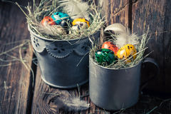 Quail and hen Easter eggs with hay in old mug Stock Image