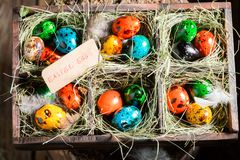 Quail and hen Easter eggs in old box with hays. In spring Stock Image