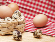 Quail and hen eggs Stock Photo