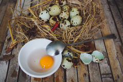 Quail nest with spotted eggs, spoon, broken egg on a plate Stock Photography