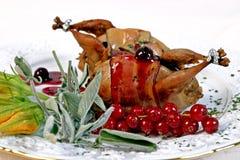 Quail roast. A roasted quail on a plate royalty free stock image