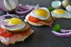 Quails egg sandwich. Typical German sandwich redone in mini Stock Photography