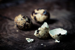 Quail's Egg. Shell against wooden backdrop stock photo