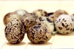 Quail's Eggs Stock Photography