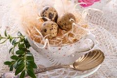 Quail's eggs. A fresh and tasty quail's eggs Royalty Free Stock Photos