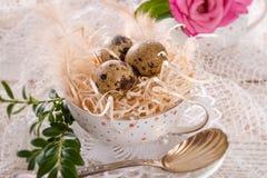 Quail's eggs. A fresh and tasty quail's eggs Stock Photography