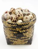 The quail's eggs in basket Stock Photo