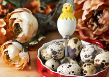 Quail's eggs with decorative  spoon and flowers Royalty Free Stock Photos
