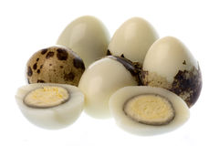 Quail's Eggs Isolated Stock Image