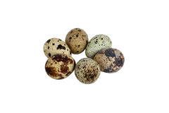 Quail's eggs isolated over white background Royalty Free Stock Photo
