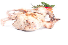 Quail and spices Before cooking Royalty Free Stock Image