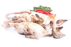 Quail and spices Before cooking Royalty Free Stock Photos